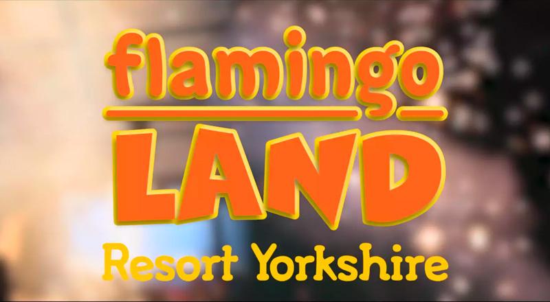 flamingo-land